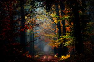 secret_places_by_nelleke-d733sej