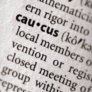 caucus-dictionary